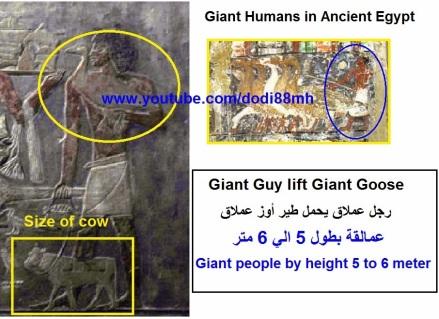 96287-giantbirdsinancientegypt2